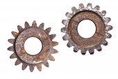 Two Rusty Gears