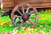 Old wheel of wooden carriage in autumn park