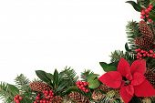 Christmas floral border with poinsettia flower, holly and winter greenery over white background.
