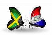 Two Butterflies With Flags On Wings As Symbol Of Relations Jamaica And Paraguay