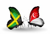 Two Butterflies With Flags On Wings As Symbol Of Relations Jamaica And Singapore