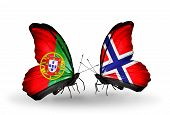 Two Butterflies With Flags On Wings As Symbol Of Relations Portugal And Norway