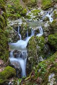 Stream Ponicova, Romania