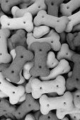 Mixed Dog Biscuits
