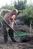 Man Planting Seedling