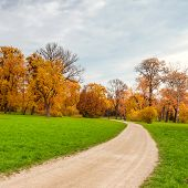 The road in the morning in the autumn city park Ukraine