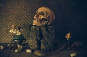 pic of art gothic  - Still Life with a Skull concept on the art - JPG