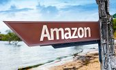 Amazon wooden sign with a lake background