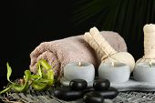 Beautiful spa composition with bamboo on dark background