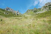 Meadow On Hillside And Peaks Nearby Chamonix In France
