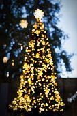 Christmas Tree The Bokeh Effect