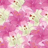 background with pink lilies.floral background
