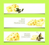 Three banners with watercolor cheese illustration on the green background. Simple illustration of or