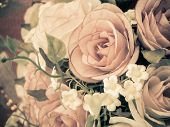 Rose Flower With Retro Filter Effect