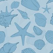 Seamless pattern of hand drawn seashells. Vector illustration