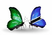 Two Butterflies With Flags On Wings As Symbol Of Relations Saudi Arabia And Botswana