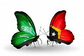Two Butterflies With Flags On Wings As Symbol Of Relations Saudi Arabia And East Timor