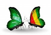 Two Butterflies With Flags On Wings As Symbol Of Relations Saudi Arabia And Guinea