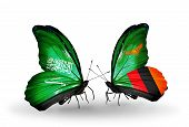 Two Butterflies With Flags On Wings As Symbol Of Relations Saudi Arabia And Zambia