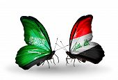 stock photo of iraq  - Two butterflies with flags on wings as symbol of relations Saudi Arabia and Iraq - JPG