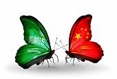 Two Butterflies With Flags On Wings As Symbol Of Relations Saudi Arabia And China
