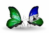 Two Butterflies With Flags On Wings As Symbol Of Relations Saudi Arabia And  Lesotho