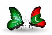 Two Butterflies With Flags On Wings As Symbol Of Relations Saudi Arabia And Maldives