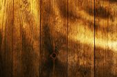 Wooden texture, close up