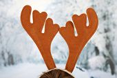 Pair of toy reindeer horns on bright background