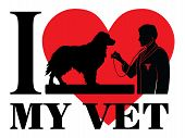pic of vet  - I Love My Vet is an illustration of a design to show your love for your vet or veterinarian - JPG