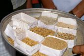 Stages Of Rice Processing