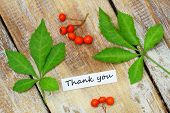 Thank you card with two green leaves and rowan berries on rustic wooden surface