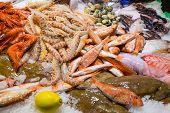Fine seafood in the Boqueria