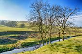 picture of west village  - A view of The Cumbrian village of Grayrigg - JPG