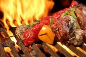 pic of kababs  - Barbecue Beef Kababs On The Hot Grill Close - JPG