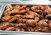 stock photo of clam  - Hard clams for sale in the local fish market of Catania - JPG