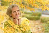 foto of beautiful senior woman  - Portrait of a beautiful senior woman sitting in the autumn park - JPG