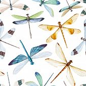 stock photo of dragonflies  - Beautiful vector pattern with nice watercolor dragonflies - JPG