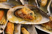 foto of clam  - Delicious Fresh Clams with herbs and garlic - JPG