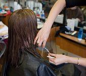 Scissors & Hair