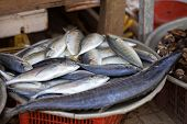 picture of stall  - Traditional asian fish market stall full of fresh fish - JPG