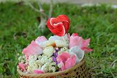 image of valentine candy  - Candy valentines hearts and artificial flowers with nature - JPG