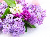 picture of violet flower  - Lilac flowers bunch over white wooden background - JPG