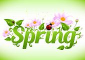 Постер, плакат: Spring Positive Postcard For Congratulations With Beginning Of Spring