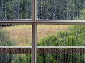 stock photo of rain-drop  - looking out of the window on a wet and rainy day - JPG