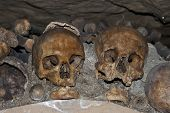 stock photo of catacombs  - photo taken in the catacombs of Paris - JPG