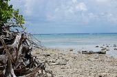 View of Coco's Island beach, Guam