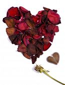 stock photo of lost love  - the pedals from a withered red rose form a heart - JPG