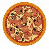 Realistic Illustration Pizza On White Background