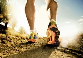 Strong Legs And Shoes Of Sport Man Jogging In Fitness Training Workout On Off Road poster